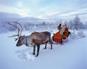 Коледа в Лапландия 2015 - Леви
