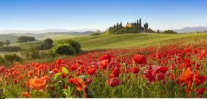 Септемврийски празници в Тоскана, Италия с полет от София