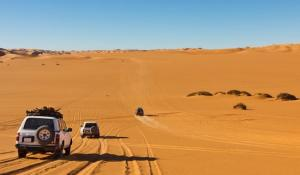Почивка в Тунис с полет от София - Riadh Palms 4* - бюджетен варинт за почивка