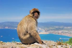 Промоция + БОНУС 3 екскурзии! Почивка в Испания, Костадел Сол - Fuengirola Park 4*