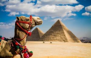 Почивка Перлите на Египет - Хургада + Кайро с полет от Варна - Marlin Inn Azur Resort 4*