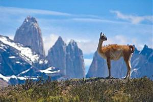 Чили, Великденските острови, пустинята Атакама, Патагония и солената пустиня Уюни в Боливия - бг група - самолет от София - ПОТВЪРДЕНА!