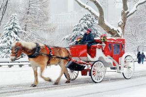 Виена - Коледни базари - със самолет и водач на български език!