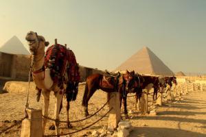 Круиз по Нил, екскурзия в Кайро и мини почивка в Хургада LAST MINUTE!!!