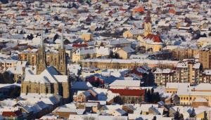 Нова година 2019  в СЪРБИЯ,  Вършац,  Собствен транспорт, 3 нощувки н полупансион + Празнични вечери с напитки в х-л SRBIJA 3*