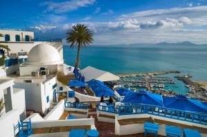 Тунис 2019 на супер цени с полет от София - хотел Omar & Dar Khayam 3* Premium