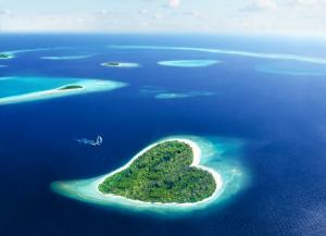 Малдиви и Шри Ланка - почивка и екскурзия
