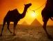 СПЕЦИАЛНИ ЦЕНИ ПРЕЗ МЕСЕЦ АПРИЛ!ПОЧИВКА В ЕГИПЕТ - ХОТЕЛ SAMRA BAY RESORT 4* PREMIUM